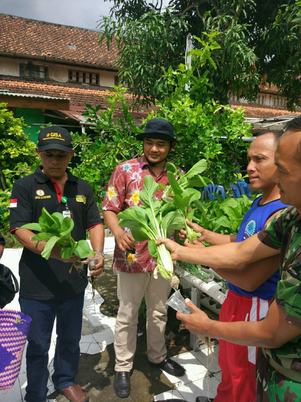 Kampung Sayur Jetisharjo